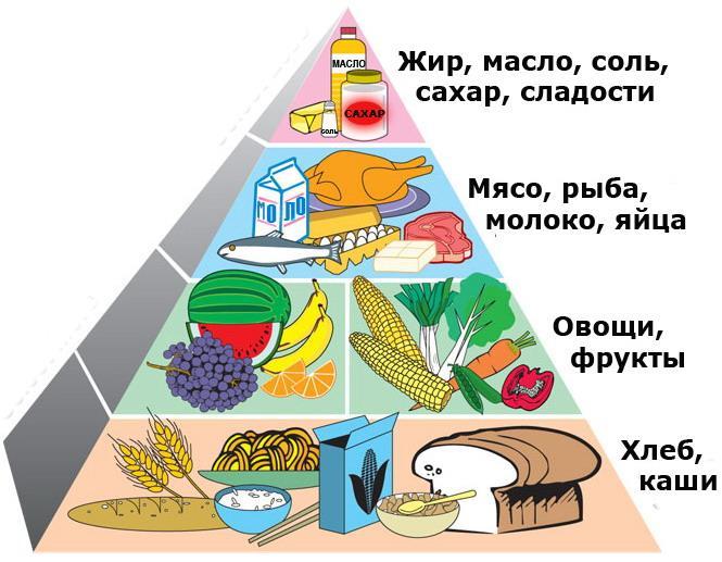 Памятка Пирамида здоорового питания